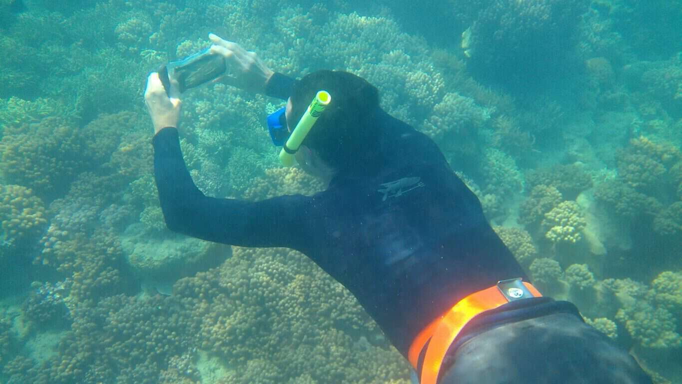 Great-Barrier-Reef-0969_Moment