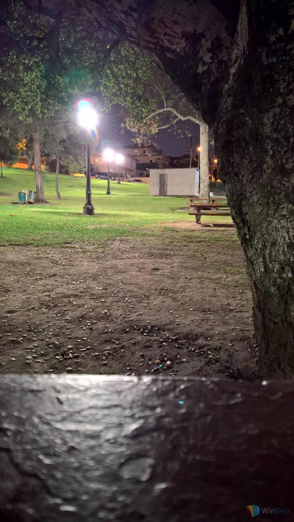 Lumia 950 manual shot in park at night.