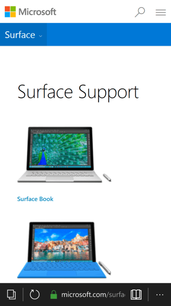 Surface Support page.