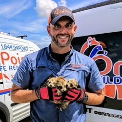 Owner of On Point Wildlife Removal with three raccoon pups.