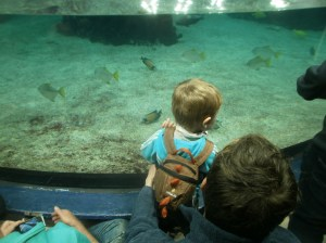 The Boy & Daddy at the Deep