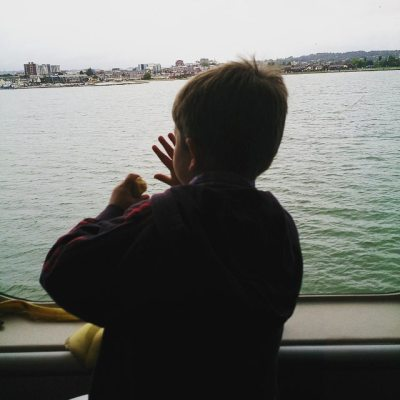 Watching as we leave Poole Harbour..