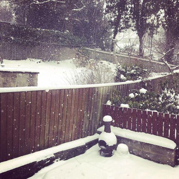 Snowing again :(