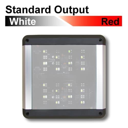 Standard LED Surface Mount Interior Lights