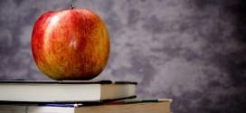 10 razones para invertir en Educación para Adultos