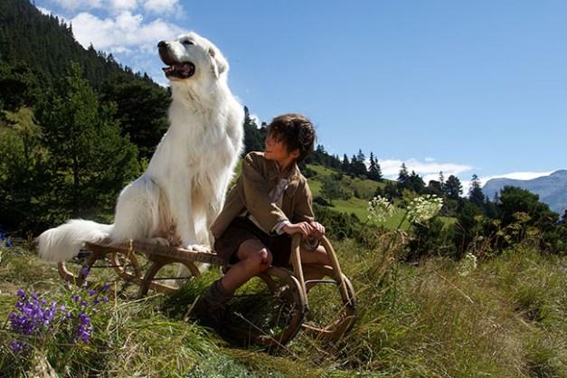 Film Belle et Sébastien, l'aventure continu... Réalisé par Christian DUGAY. Départ luge. Pierrelongue - 07/08/2014