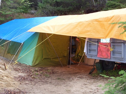 bear safety while tent camping in Ontario