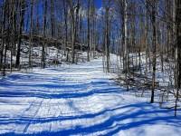 Hilton Falls Conservation Area - Winter Hike