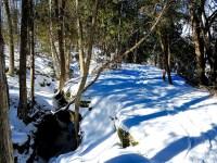 Hilton Falls - winter hike
