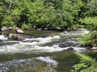 The lower rapids_Rushing River Provincial Park