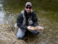 Credit River opener brown trout.