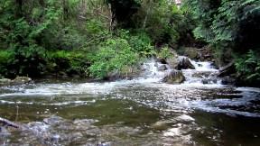 Credit River pool.