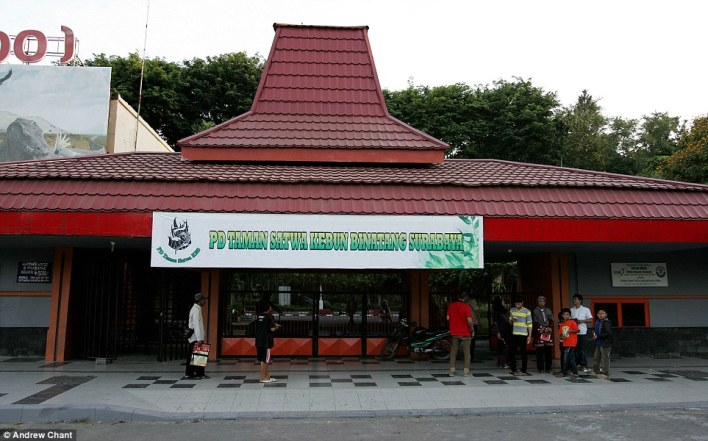 أسوء حديقة حيوان في العالم في اندونيسيا