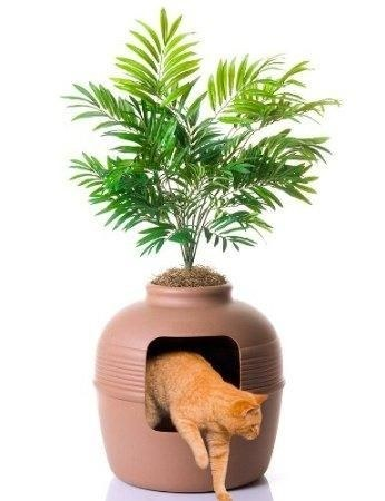 منتوجات لراحة القطط و حماية المنزل من عواقب إقتنائها ! (15)