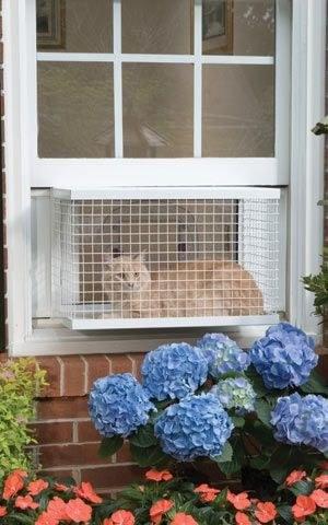 منتوجات لراحة القطط و حماية المنزل من عواقب إقتنائها ! (16)