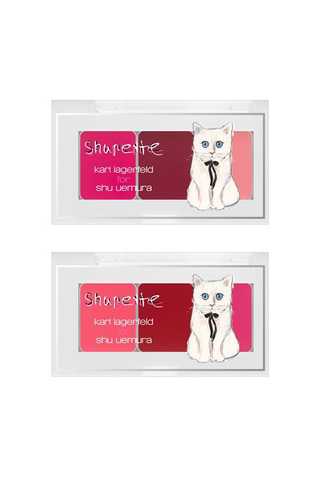 مكياج الأميرة القطة Shupette (8)