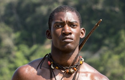 Preview – Roots