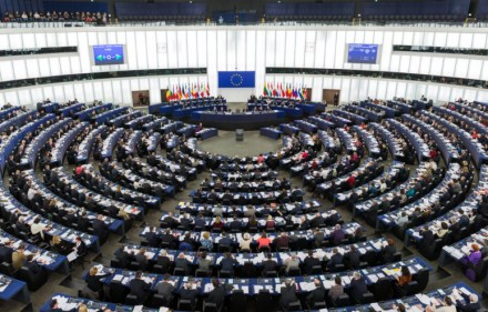 Preview – European Election Results