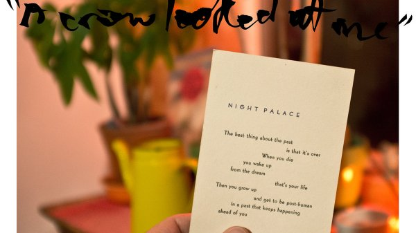 Mount Eerie : A Crow Looked At Me