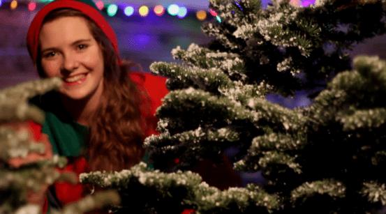 Christmas Wonderland at Grenagh Open Farm