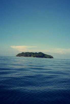 Borneo 25