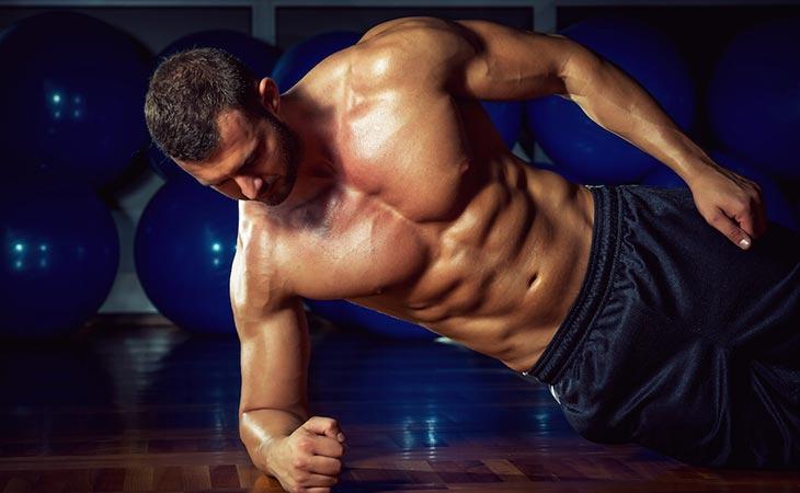 Alternative Plank Twist Workout Exercise