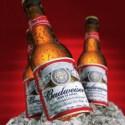 budweiser-bottles-271x300