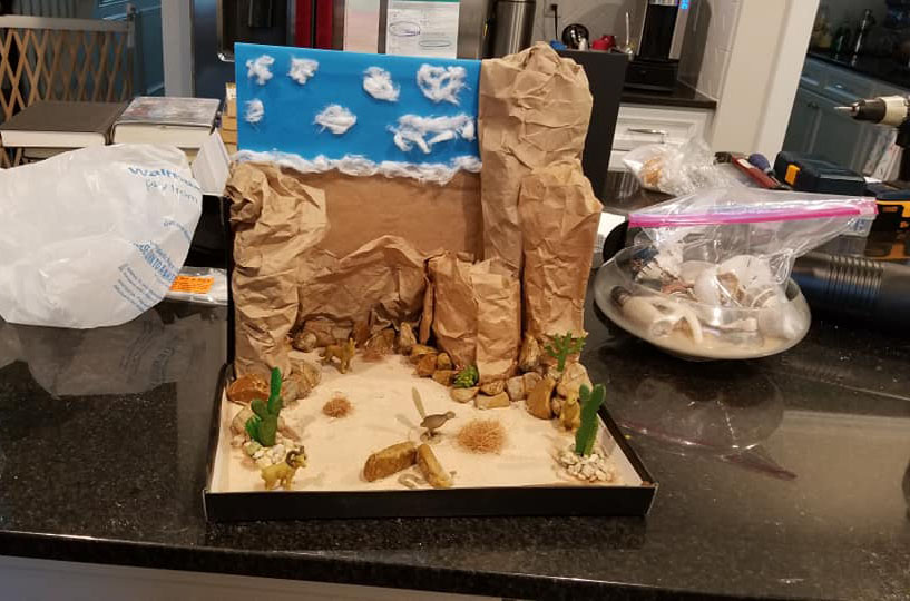 Luke's SWOT Analysis And Desert Diorama – On The Wing