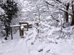 Gateway to Snowdom
