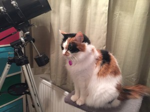 Fifi with no lens attached