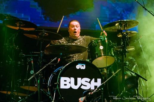 Bush-2852