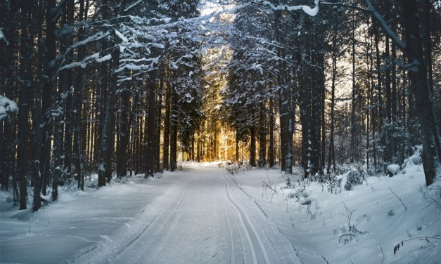 Times of Refreshing Winter Devotional