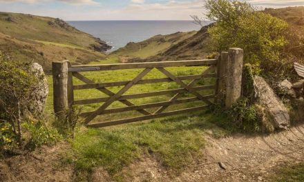 Psalm 1: Song in The Gate