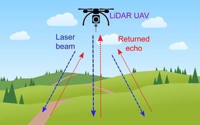 Lidar Landscape Survey