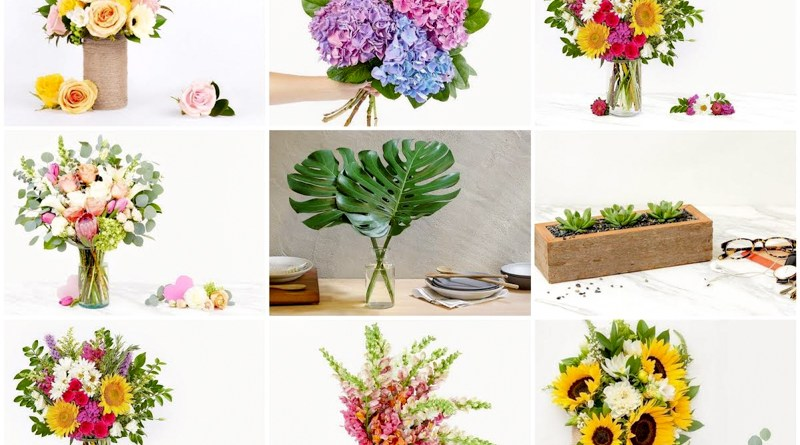 Why A Better Florist is The Best Flower Shop Singapore Has