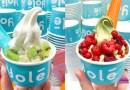Yolé CNY Japanese Matcha & New York Cheesecake Fresh Ice Cream