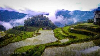 rice terraces banaue philippines