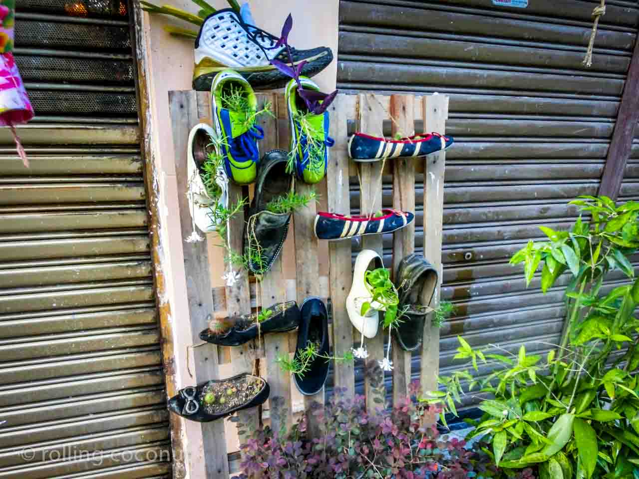 plant shoes georgetown malaysia