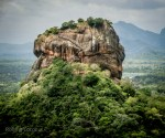 Things To Do in Dambulla and Sigiriya in One Day, Sri Lanka