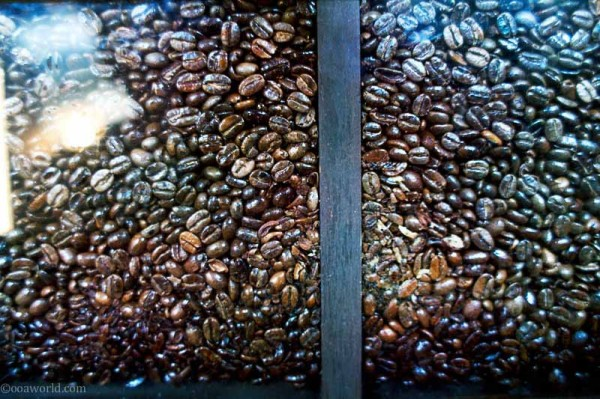 Seattle starbucks unbrown gold USA road trip photo ooaworld