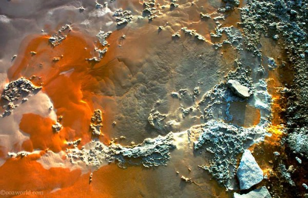 Texture, Yellowstone Park, Orange Germs