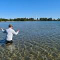 carp fly - fishing