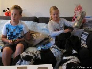 Oscar en Zoé komen een kadootje brengen voor Nurja en Bine en puppy's kijken