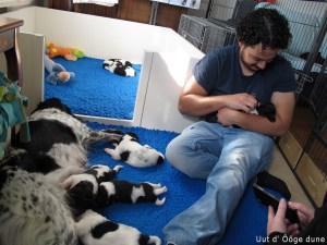 puppy bezoek