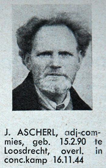 Jos Ascherl