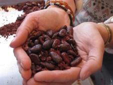 fresh_beans