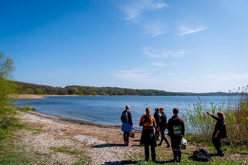 lær om de vilde planter ved søen