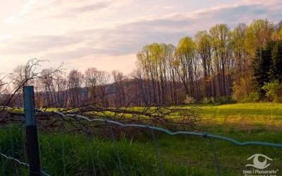 Spring in West Virginia
