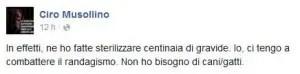 musollino1