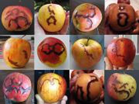 Algunas de las fotos enviadas por los visitantes de este 21 de julio círculo que tomó las manzanas en él con ellos y cuyas manzanas más adelante desarrollado estas marcas.
